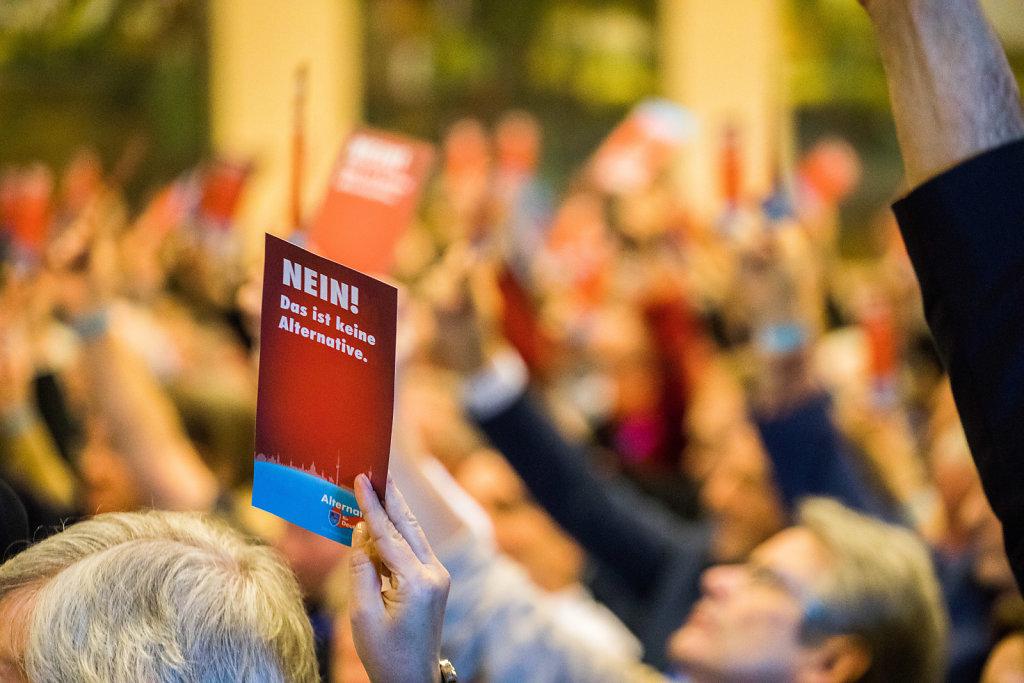 Landesparteitag Alternative für Deutschland (AfD) Niedersachsen zur Aufstellung der Landesliste für die Bundestagswahl