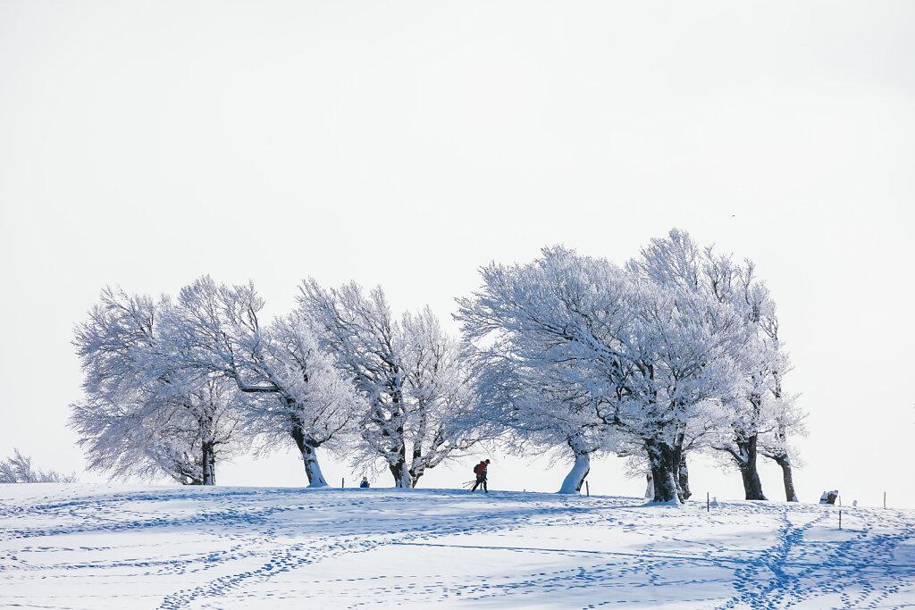 Winterwetter im Schwarzwald