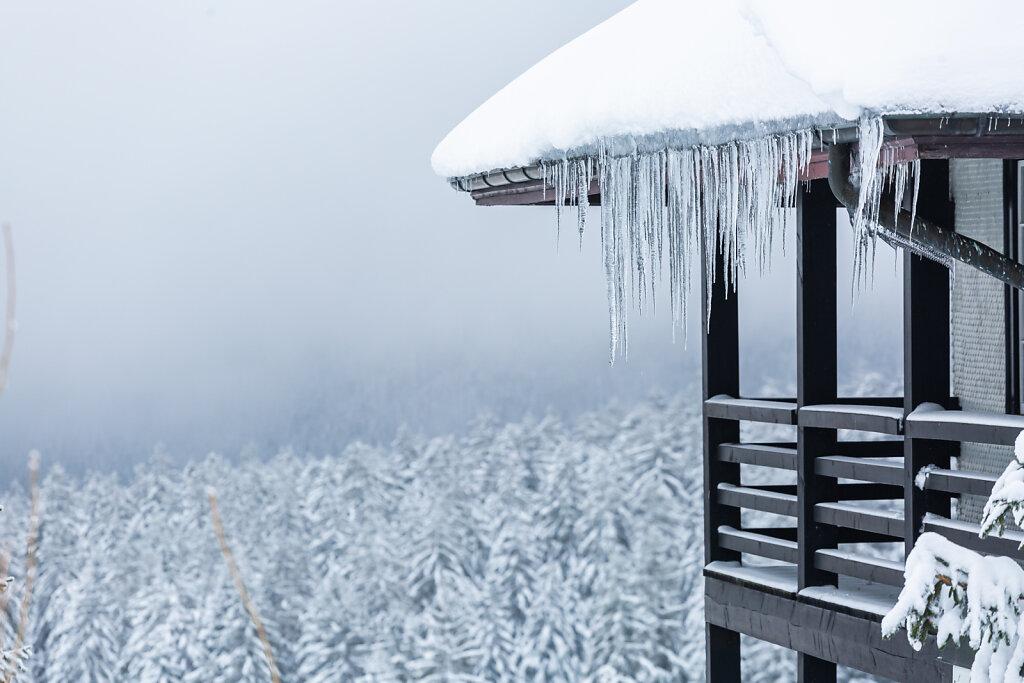 Winterwetter im Schwarzwald an Neujahr